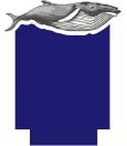 2017国际海洋电影节logo副本
